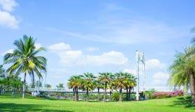 Emplacement dans le parc, le pont et les paumes extérieurs en parc photographie stock libre de droits
