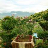 emplacement gentil de relaxation, grand amour de vue ces endroit images stock
