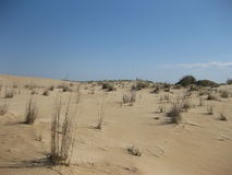 Dunes de sable de premier vol en Caroline du Nord Photo stock