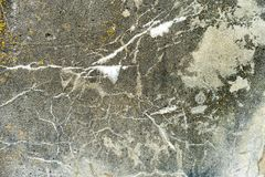 Emplastro riscado sujo velho da textura molhada branca da parede como o fundo do grunge fotos de stock