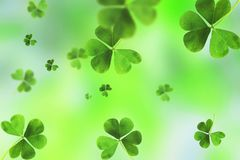Emplate Design banner on St. Patrick`s Day royalty free stock photography