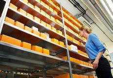 Empleado de sexo femenino de la farmacia que busca los estantes para las drogas y la medicina Foto de archivo