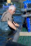 Employé d'exploitation de pisciculture à la carrière de crépuscule Image libre de droits