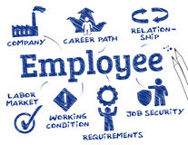 Employee. Chart with keywords and icons Royalty Free Stock Images