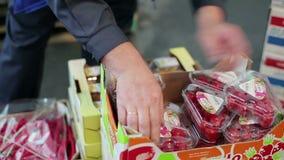 Employee checks a box of chili stock footage