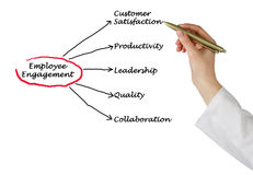Employee Engagement. Diagram of Employee Engagement results Royalty Free Stock Photography
