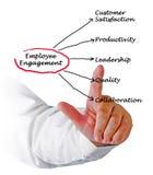 Employee Engagement. Presenting diagram of Employee Engagement Stock Image
