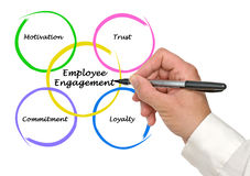Employee Engagement. Presenting diagram of Employee Engagement Stock Image