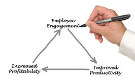 Employee Engagement. Presenting diagram of Employee Engagement Royalty Free Stock Images