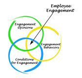 Employee Engagement. Three components of Employee Engagement Royalty Free Stock Images