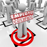 Employee Orientation Words New Worker Organization Chart Royalty Free Stock Photos