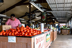 Employee restocks tomatoes at Durban Farms Market. Clanton, Alabama, USA - June 17, 2017: An employee at Durban Farms Market restocks tomatoes in the display Stock Photo