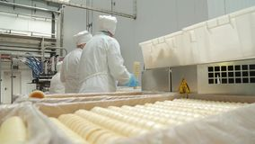 Employees at the ice cream factory stock video