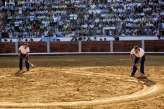 Employees of the service from the plaza de toros de Pozoblanco smoothing the sand with a rake in Pozoblanco Royalty Free Stock Photography