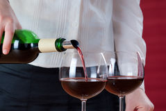 Empregada de mesa que derrama o vinho vermelho imagem de stock royalty free