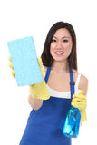 Empregada doméstica bonita que lava com esponja Foto de Stock