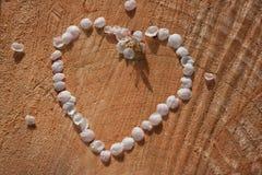Empregada doméstica do contorno do coração do vintage das pétalas da cereja em fundo de madeira rachado Fotografia de Stock