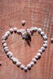 Empregada doméstica do contorno do coração do vintage das pétalas da cereja em fundo de madeira rachado com profundidade rasa Fotos de Stock Royalty Free