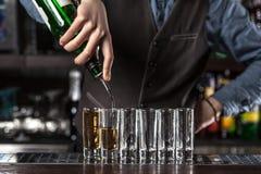 Empregado de bar no trabalho Imagem de Stock