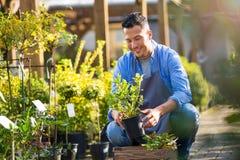 Empregado do Garden Center Imagens de Stock Royalty Free