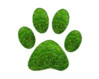 Empreinte de pas animale d'herbe verte sur le fond blanc Photo stock