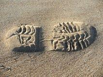 Empreinte de pas dans le sable photo stock