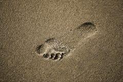 Empreinte de pas dans le sable Photo libre de droits