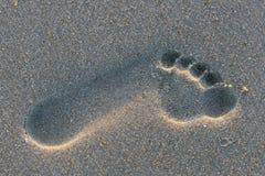 Empreinte de pas dans le sable Image stock