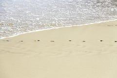 Empreinte de pas dans le sable sur la plage Photographie stock libre de droits