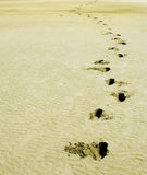 Empreinte de pas douce de sable sur le monde, Dubaï Photographie stock