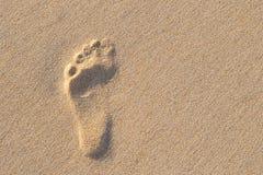 Empreinte de pas humaine sur le sable avec la foudre étonnante du soleil de nature Peut s Images stock