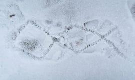 Empreinte de pas sur la neige Photographie stock libre de droits