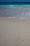 Empreinte de pas sur la plage Photographie stock