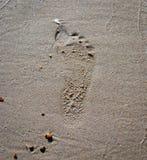 Empreinte de pas sur le sable de mer Photos stock