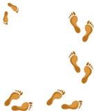 empreintes de pas Images libres de droits