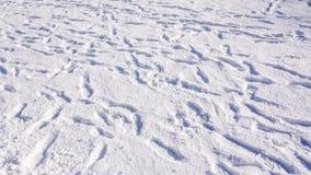 Empreintes de pas aléatoires de direction sur la neige Images libres de droits