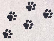 Empreintes de pas animales photo stock
