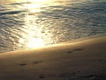 Empreintes de pas au coucher du soleil Photos stock
