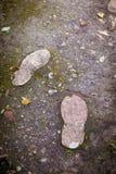 Empreintes de pas au jardin Photos libres de droits