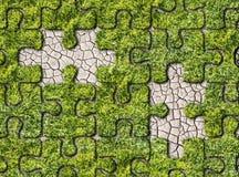 Empreintes de pas croissantes d'herbe verte sur le fond blanc Photo libre de droits