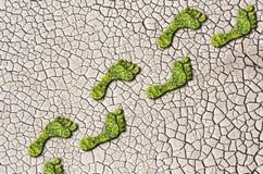 Empreintes de pas croissantes d'herbe verte sur le fond criqué de la terre Photo libre de droits