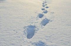 Empreintes de pas dans la neige, congère, photographie stock libre de droits
