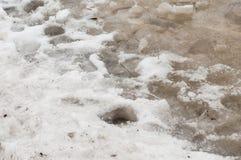 Empreintes de pas dans la neige dégelées Photos stock