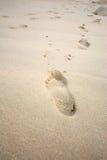 Empreintes de pas dans la plage de sable Images libres de droits