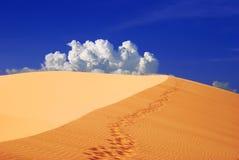 Empreintes de pas dans le sable photographie stock libre de droits