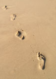 Empreintes de pas dans le sable Photo libre de droits