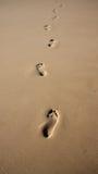 Empreintes de pas dans le sable Images stock