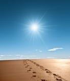 Empreintes de pas de Sandy photos stock