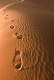 Empreintes de pas dans le sable, Maroc Images libres de droits