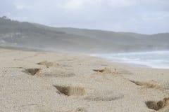 Empreintes de pas dans le sable sur la plage photo stock